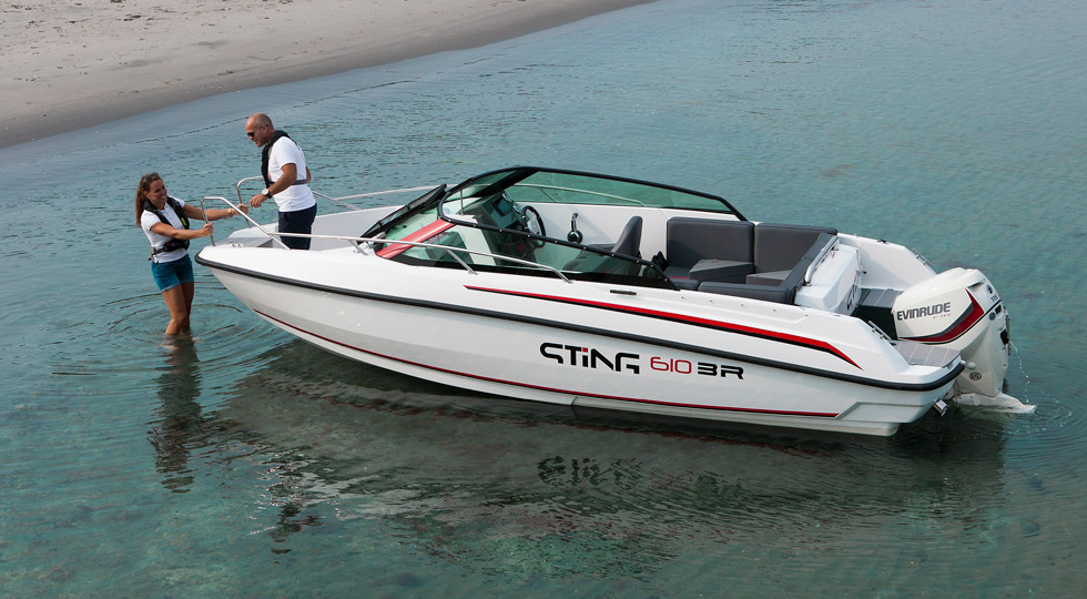 Sting-610-BR_2